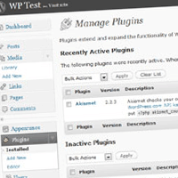 How to Build a Custom WordPress Plugin