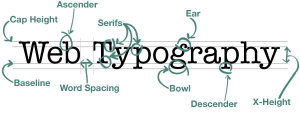 Typography, Examined and Labeled