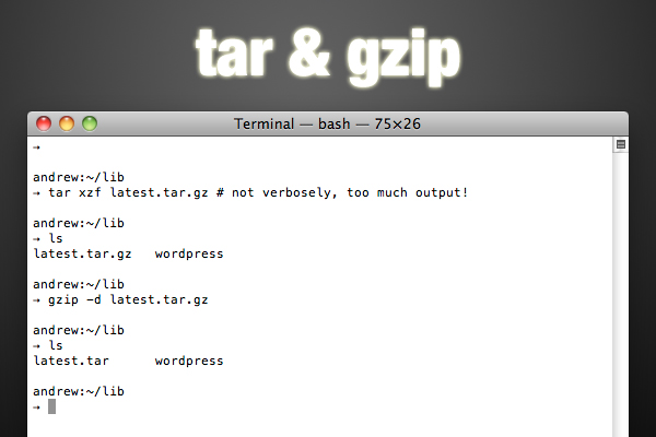 tar and gzip