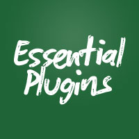 Vim Essential Plugins